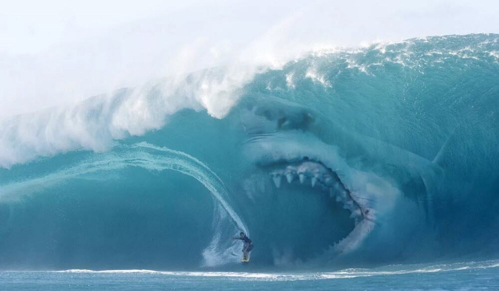 The Rising Tide of Digital Tax: Are You Surfer or Shark Bait?